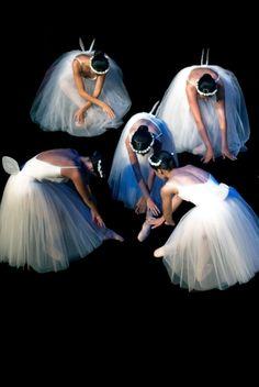 Ballet Teatro Helena Sá e Costa Stage Performances » Aisa Araújo Photography #Porto #Portugal #Ballet #Dance #LifeShow #photographyliveperformance #dancephotographer