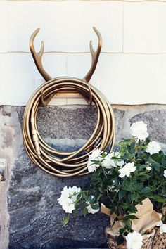 Garden glam: gold covered hose held up by gold painted antlers