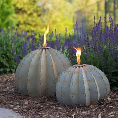 Barrel Cactus Garden Torch - Desert Steel Co. Citronella, Golden Barrel Cactus, Outdoor Torches, Garden Torch, Magic Garden, Garden Whimsy, Dream Garden, Garden Art, Garden Crafts