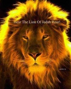 """The Lion of Judah. Stop and listen to what He is saying to you! Read His Word, pray, and """"Be still and know HE is God! Judah And The Lion, Lion And Lamb, Lion Of Judah Jesus, Tribe Of Judah, Jesus Is Lord, Jesus Christ, Savior, Prophetic Art, Jesus Pictures"""