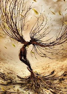 Tree People, Art Paysage, Tree Art, Strong Wind, Mythical Creatures, Fantasy Creatures, Faeries, Fantasy Art, Art Photography