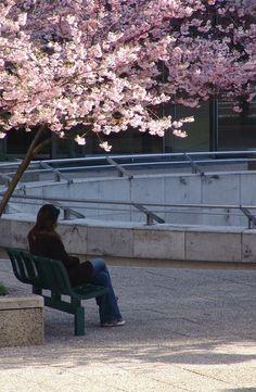 ©Vincent Brun Hannay Paris La Défense