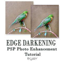 PSP with TOC: Edge Darkening -A Paint Shop Pro Photo Enhancement Tutorial