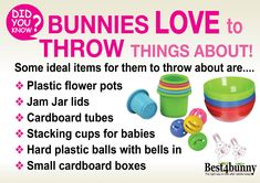 Best 4 Bunny has links to the best rabbit-related products to save you the time and trouble Bunny Cages, Rabbit Cages, House Rabbit, Rabbit Toys, Pet Rabbit, Pet Bunny Rabbits, Lop Bunnies, Bunny Bunny, Bunny Care Tips