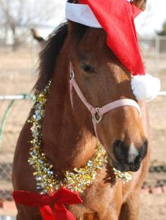 ~ Holiday Horse, Maybe someday I will get that pony for Christmas...