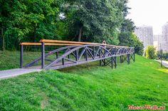 Bialowieza_pond_13.jpg (1200×794)