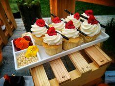 Vanilla Cupcakes, Butter Cream Icing, Raspberry, Chocolate