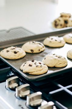 These are THE BEST soft chocolate chip cookies! No chilling required. Just ultra thick, soft, classic chocolate chip cookies! Chip Cookie Recipe, Cookie Recipes, Dessert Recipes, Perfect Chocolate Chip Cookies, Chocolate Chip Recipes, Chocolate Chips, Chocolate Cake, Vegetarian Chocolate, Just Desserts