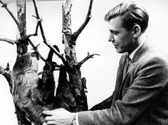 David Attenborough with a sloth in the studio.