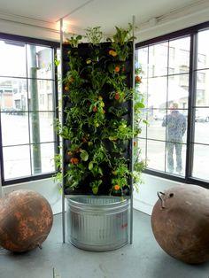 estupenda jardinera vertical de interior