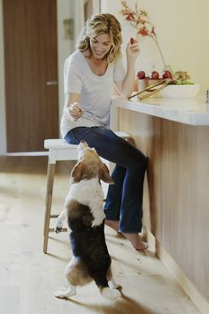 Overweight pup? Dr. Alison Tani shares some lazy ways you can help your pup shed some unwanted pounds.