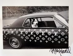 Ricky Powell Husky Dog in Custom Louis Vuitton Car | Sumally