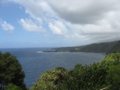 On the road to Hana on the island of Maui - didn't quite make it to Hana, but loved the drive.