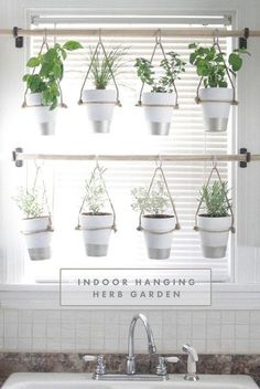DIY Indoor Hanging Herb Garden // Learn how to make an easy, budget-friendly hanging herb garden for your window. It will make your house prettier and fill your gardening void during winter months. #hanginggardens #herbgardening