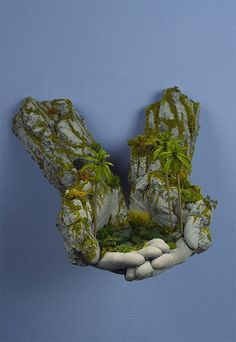 may try to do this with the gloves and hypertufa recipe. Related Post DIY Project u2022 Contemporary Garden Water Featu... Rock Cloth for when I start my rock garden. -what ... Container garden-Note the wall of food gardening, ... Globallshare | Make the Most of World