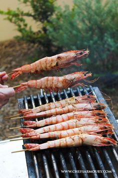 For the most delicious tasting bbq prawns, try this simple no fuss method and throw your shrimps on the barbie. We highly recommend using binchotan - Japanese white charcoal - to get the best flavour out of your bbq prawns. Japanese Bbq Grill, Bbq Prawns, Seafood Recipes, Chicken Recipes, Bbq Stand, Grilled Lobster, Easy Japanese Recipes, Balanced Meals, Food Drawing