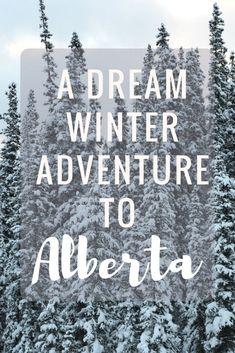 A Dream Winter Trip