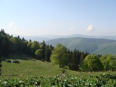 Wild Camping - Transylvania by Paul.White, via Flickr