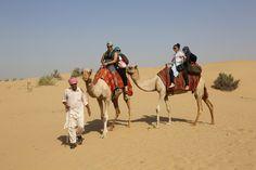 camel riding dubai by Desert  Safari Tours  on 500px