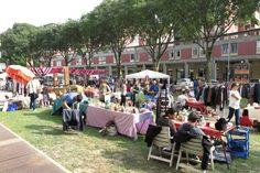 Valletta Valsecchi torna ad animarsi domenica (festa della donna), con il Mercato del Broccante, che apparecchierà le sue bancarelle nel piazzale porticato di via Ariosto.