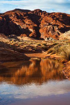 Desert Reflection - Desert Reflection Rainbow Vista  Valley Of Fire State Park Overton, Nevada