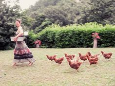 latavolamarche:  Taking the hens home to roost!