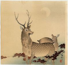 A Pair of Deer, Maple Branches, and Moon by Ohara Koson
