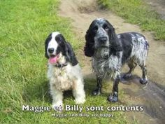 French aural story - Maggie & Billy at the river