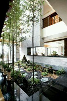 Indoor garden...
