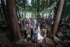 alberta forest wedding - Google Search