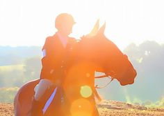 Horse Show Flares Greeting Card