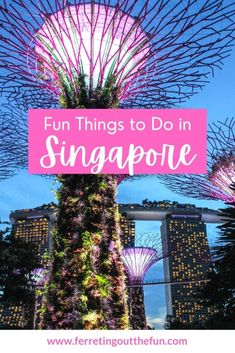 Awesome things to do in Singapore, including tips for Gardens by the Bay, Little India, Hawker Centers, speakeasies, and so much more! Cool Places To Visit, Places To Travel, Travel Destinations, Backpacking Asia, Fun Adventure, Singapore Travel, India Travel, Awesome Things, Southeast Asia