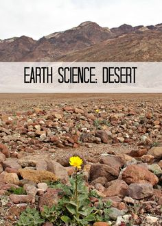 Earth Science: Desert Habitat of Death Valley