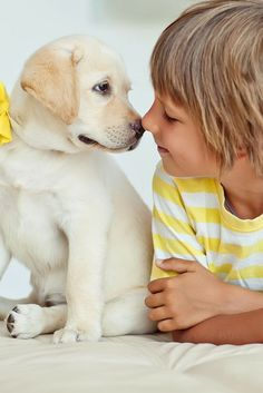 6 Ways How To Show Your Dog Love That They Can Understand. dog owner tips. dog tips pet care. Dogs And Kids, Animals For Kids, Animals And Pets, Baby Animals, Cute Animals, Best Pets For Kids, Baby Dogs, Pet Dogs, Dogs And Puppies