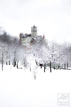 Bran Castle Winter