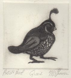 Quail   Quail This Artist Proof print of Christine McGinnis was 'pulled' or 'Printed' by David Lynch of movie making fame. Christine made these prints from the Mid 60's until the early 80's. Rodger LaPelle and Christine McGinnis would travel through the untied states selling the prints to retailers.  http://www.finelifeart.com/quail-3/