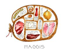 Haggis - A Look Inside - Watercolor and Ink Print