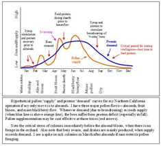 Hypothetical pollen supply and protein demand