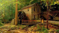 As mais belas casas na floresta 13