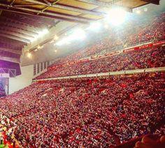 ANFIELD - LIVERPOOL FC Liverpool Stadium, Anfield Liverpool, Liverpool Home, Liverpool Football Club, Colorado Rapids, Colorado Rockies, This Is Anfield, Liverpool History, Football Love