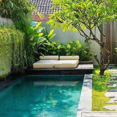 A small swimming pool and its solarium Small Swimming Pools, Small Pools, Swimming Pools Backyard, Garden Pool, Backyard Landscaping, Dipping Pool, Solarium, Small Backyard Design, Backyard Designs