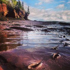 Bay of Fundy. Photo by Katja Presnal. #ExploreCanada