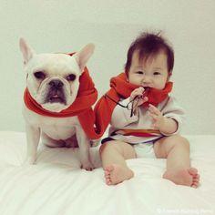 オシャレの秋♥️ #frenchbulldog #frenchie #dog #daughter #babygirl #フレンチブルドッグ #女の子
