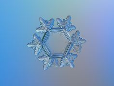 Snowflake macro photo: Sunflower, real snow crystal with unusually big, flat and empty central hexagon, relief outer rim and short arms with ridges, sparkling on bright gradient background. Available in two color variants and pencil drawing as free downloads, prints and licenses for commercial use.
