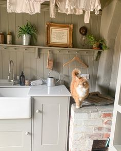 Dane and Steph of @ourhouseonluceslane (on Instagram) are lovingly restoring a Grade II listed country cottage. We love the character of their laundry room complete with our Phoenician mixer in pewter and gorgeous Darcy the 🐈 #perrinandrowe #utilityroominspiration #rustichousedesign #homedecor #utilityroomdesignideas #utilityroomdesign #homeideas #interiordesign Rustic Laundry Rooms, Laundry Room Design, Utility Room Inspiration, Utility Room Designs, Rustic Home Design, Phoenician, Large Pots, Timeless Design, Mixer
