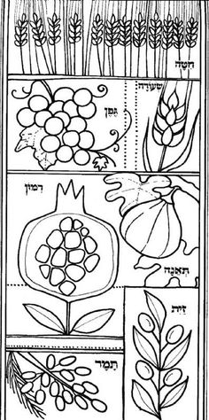 tu b shvat coloring pages - photo#18