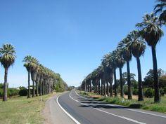 Image from http://static.panoramio.com/photos/original/1356871.jpg.