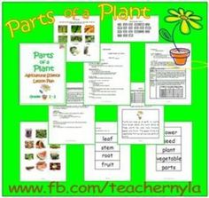 In this 6-page science lesson, students explore the world of plants and the parts of a plant; their names (leaf, stem, root, flower, fruit, and seed), functions and examples of plant-parts which are used as food by man. Included are labeled pictures of plant parts and fruits, vegetables, etc, class poster, class note and word cards for a matching activity. $2.50