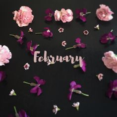 February flowers !!