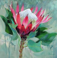 oil painting of the Protea flower Protea Art, Protea Flower, Art Floral, Fruit Painting, Painting Flowers, King Art, Abstract Canvas Art, Abstract Flowers, Sketches